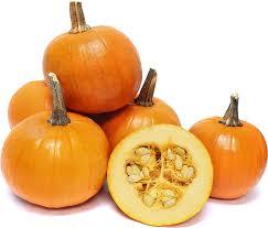 Passionate about pumpkins — Autumn's most festive fruit!