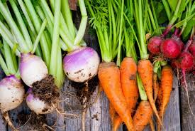 10  Tips for Stem to Root Cooking